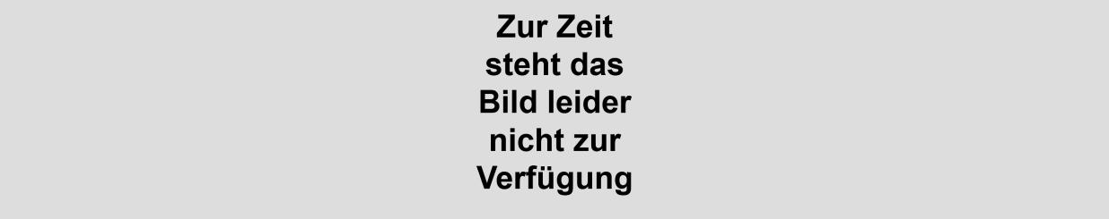 2012-03-29_Peter_und_der_Wolf