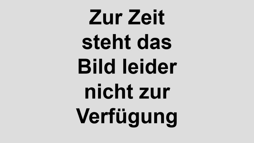 http://www.gerhart-hauptmann-schule-mannheim.de/sites/default/files/2016-10-27Entdeckungsreise3.jpg