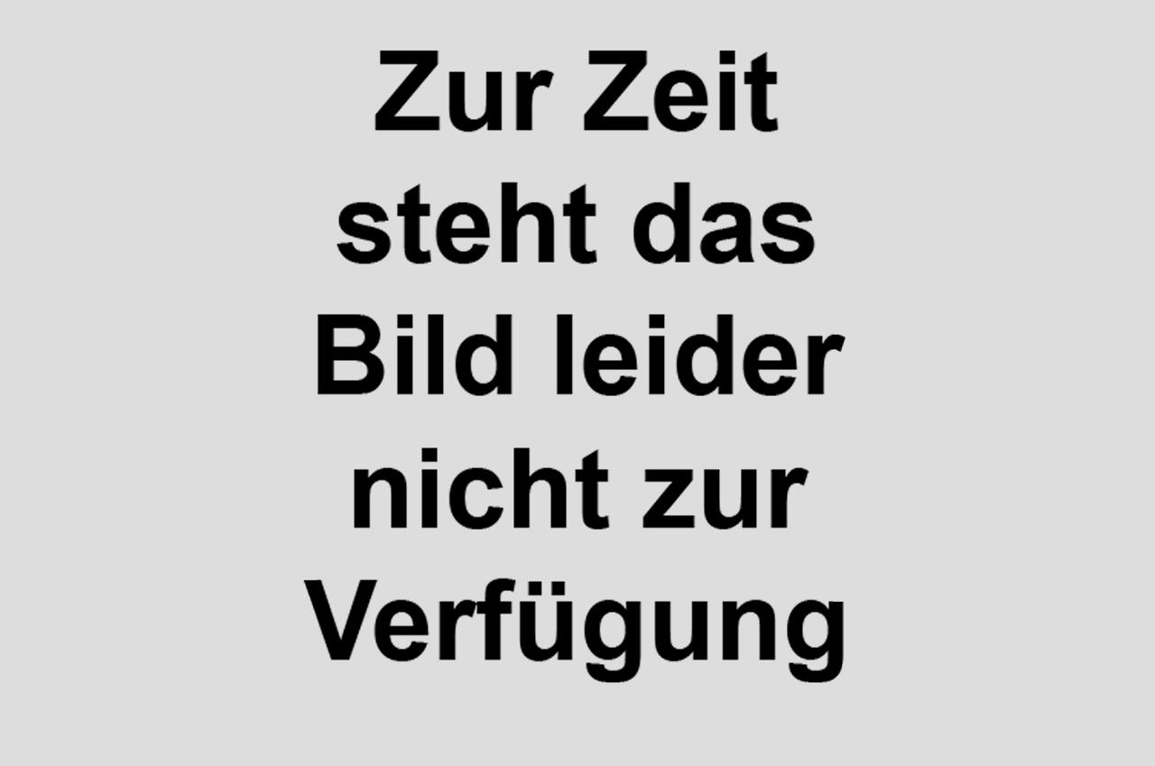 http://www.gerhart-hauptmann-schule-mannheim.de/sites/default/files/2016_12_4b-Pilze_02.jpg