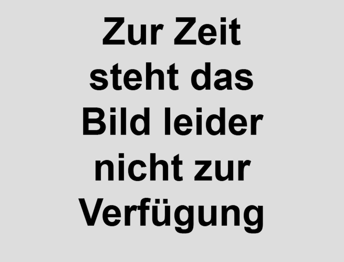 BASF_Vorstellung_01.jpg