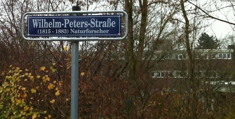 Wilhelm-Peters-Straße